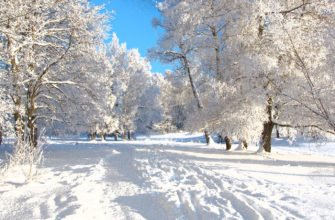 Активный отдых зимой, зимний отдых, активный отдых