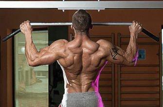 какие мышцы развиваются при подтягивании на турнике