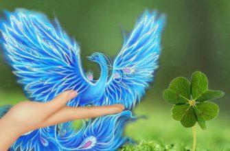 Птица удачи в руках