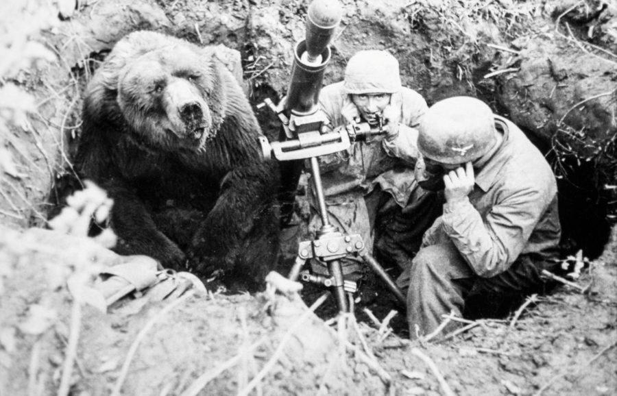 Медведь Войтек с солдатами