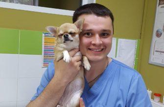 Ветеринар из Челябинска