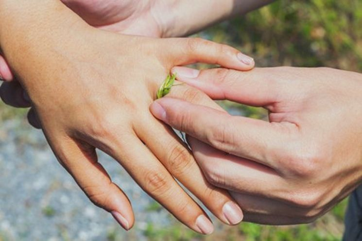 Кольцо из травы на пальце