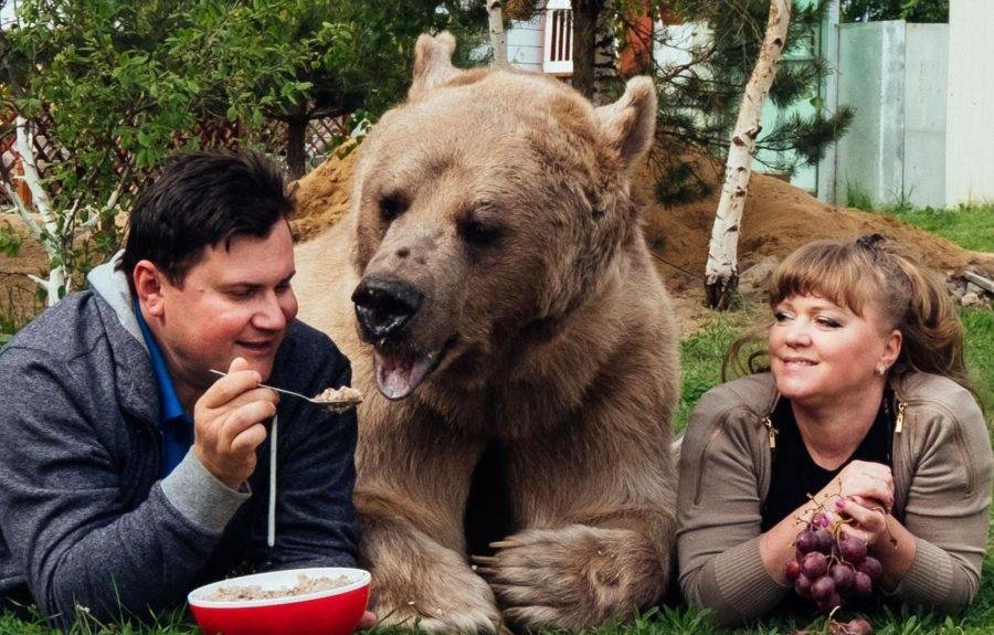 Семья Пантелеенко с медведем