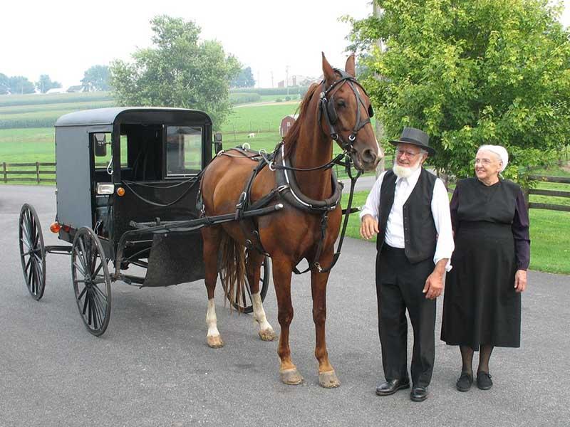 амиши — далеко не бедные люди