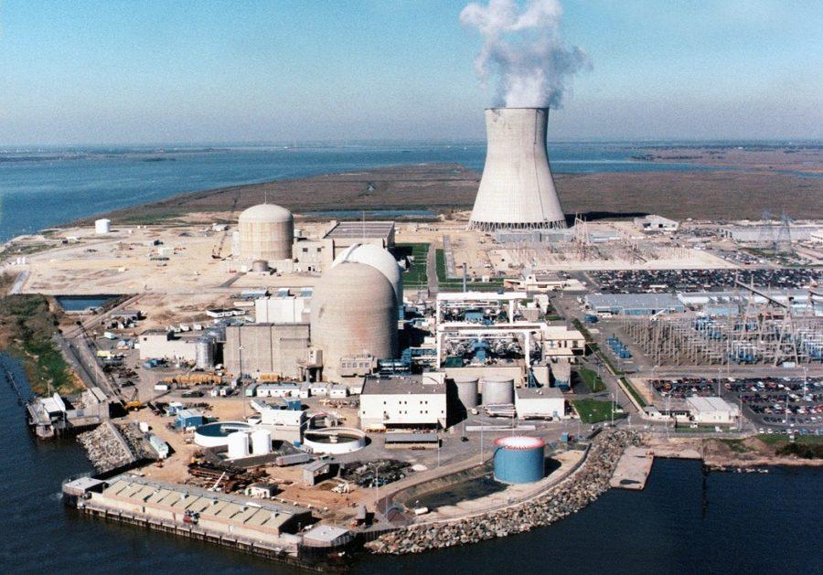 атомная станция в борках фото съедобный букет можно