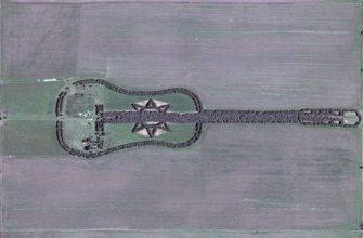 Лес в виде гитары