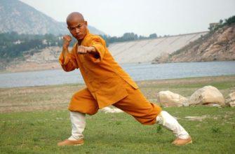 Шаолиньский монах Лю